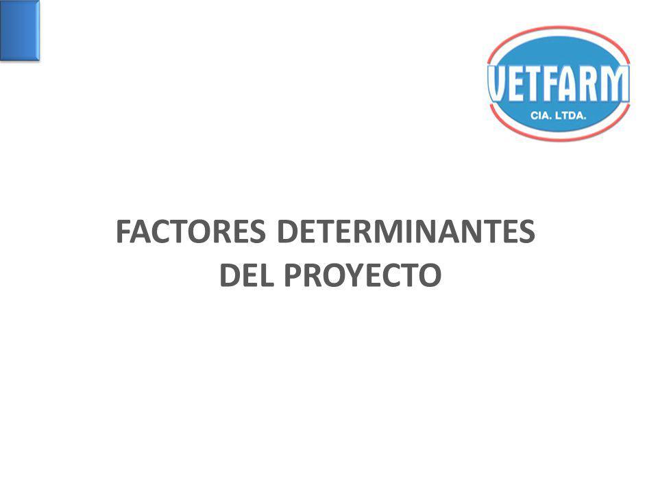 FACTORES DETERMINANTES DEL PROYECTO