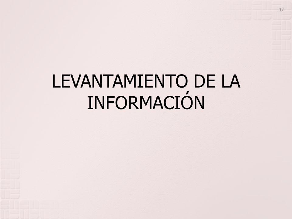 LEVANTAMIENTO DE LA INFORMACIÓN 17