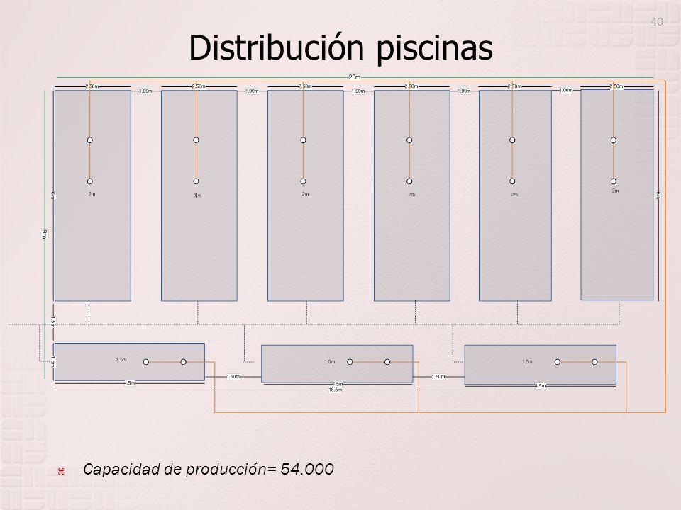 Distribución piscinas 40 Capacidad de producción= 54.000