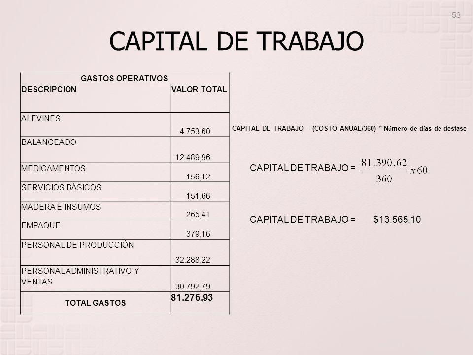 CAPITAL DE TRABAJO GASTOS OPERATIVOS DESCRIPCIÓNVALOR TOTAL ALEVINES 4.753,60 BALANCEADO 12.489,96 MEDICAMENTOS 156,12 SERVICIOS BÁSICOS 151,66 MADERA