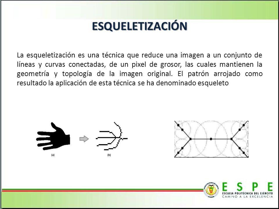 ESQUELETIZACIÓN La esqueletización es una técnica que reduce una imagen a un conjunto de líneas y curvas conectadas, de un pixel de grosor, las cuales mantienen la geometría y topología de la imagen original.