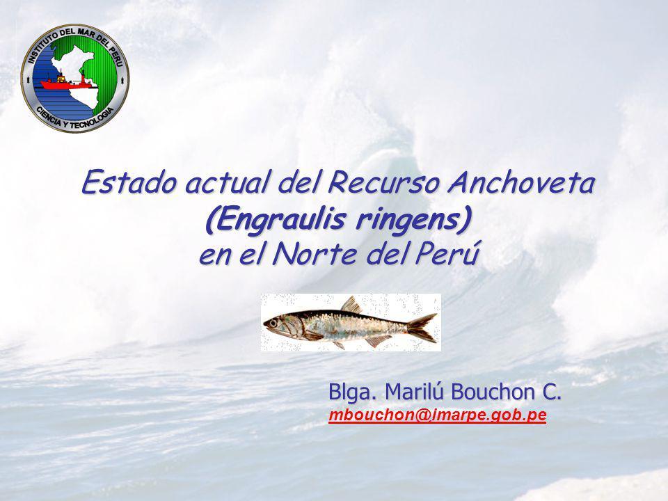 Estado actual del Recurso Anchoveta (Engraulis ringens) en el Norte del Perú Blga. Marilú Bouchon C. mbouchon@imarpe.gob.pe