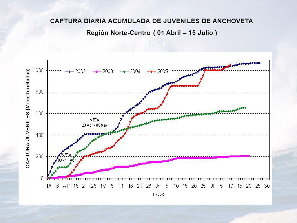 CAPTURA DIARIA ACUMULADA DE JUVENILES DE ANCHOVETA Región Norte-Centro ( 01 Abril – 15 Julio )