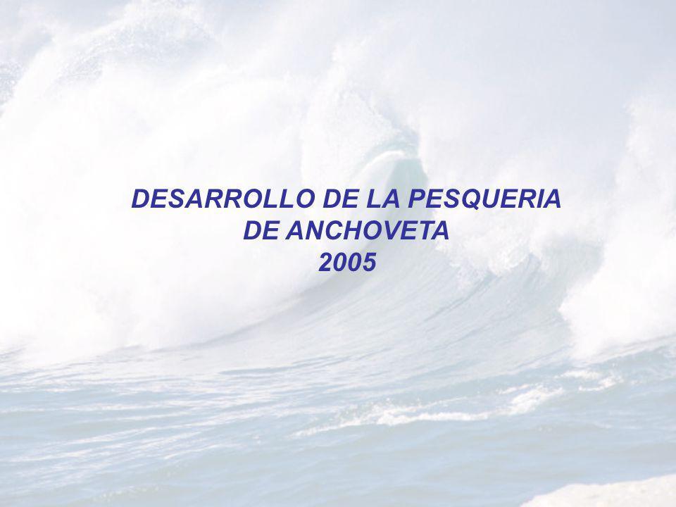 DESARROLLO DE LA PESQUERIA DE ANCHOVETA 2005