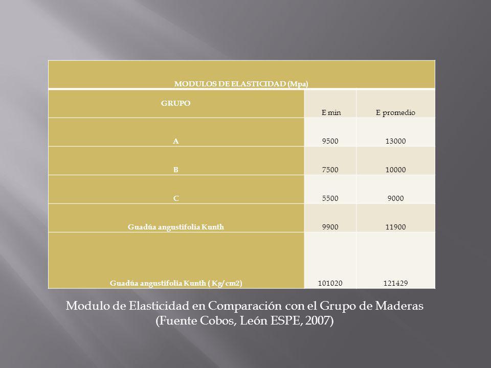 CAPITULO III PRODUCTOS DERIVADOS DE LA GUADUA APLICABLES EN CONSTRUCCION