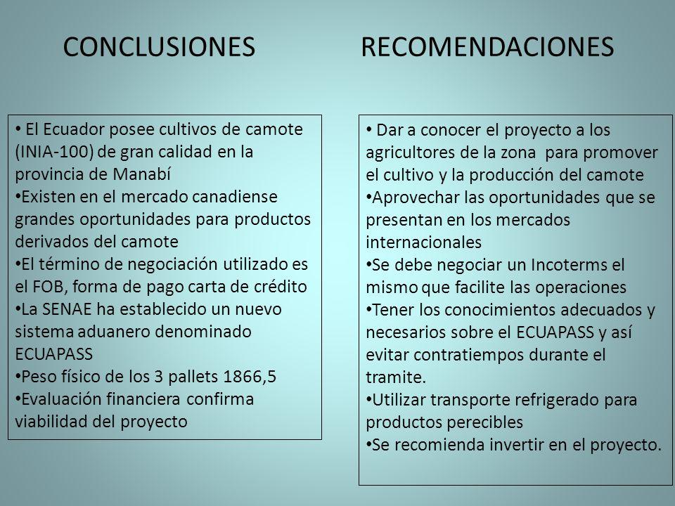 El Ecuador posee cultivos de camote (INIA-100) de gran calidad en la provincia de Manabí Existen en el mercado canadiense grandes oportunidades para p