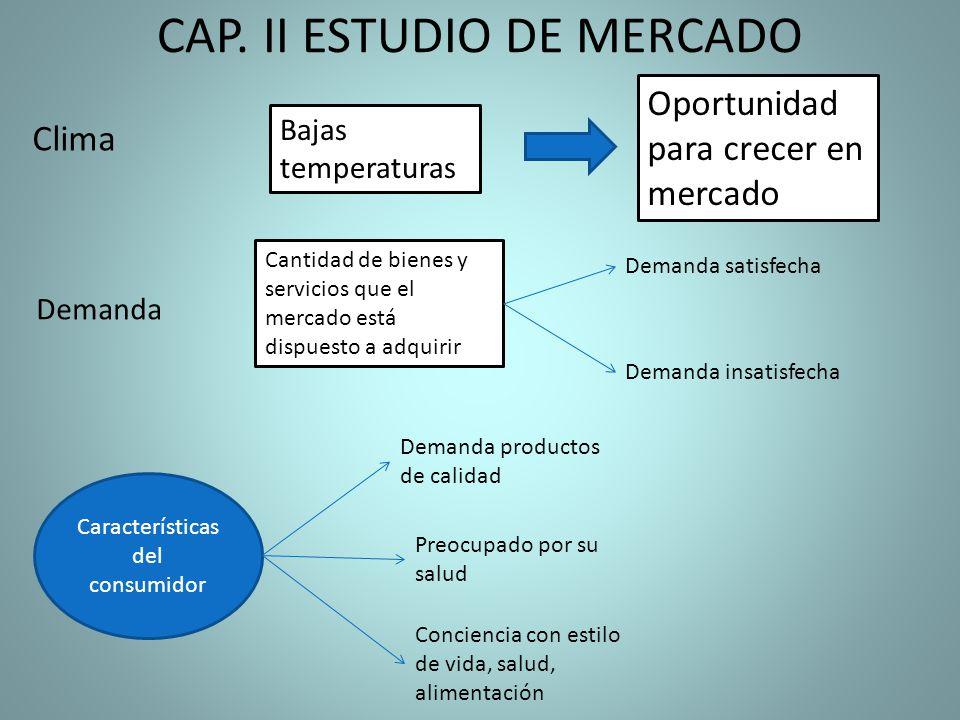 CAP. II ESTUDIO DE MERCADO Clima Bajas temperaturas Oportunidad para crecer en mercado Demanda Demanda insatisfecha Cantidad de bienes y servicios que
