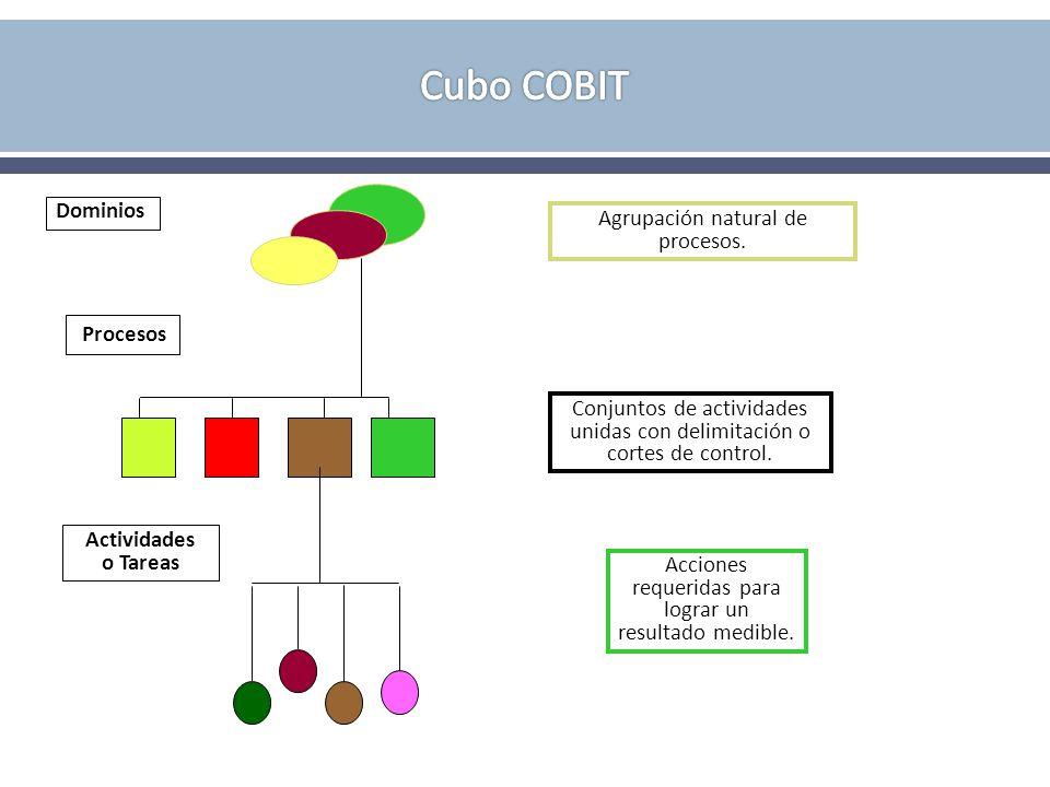 Dominios Agrupación natural de procesos. Procesos Conjuntos de actividades unidas con delimitación o cortes de control. Actividades o Tareas Acciones