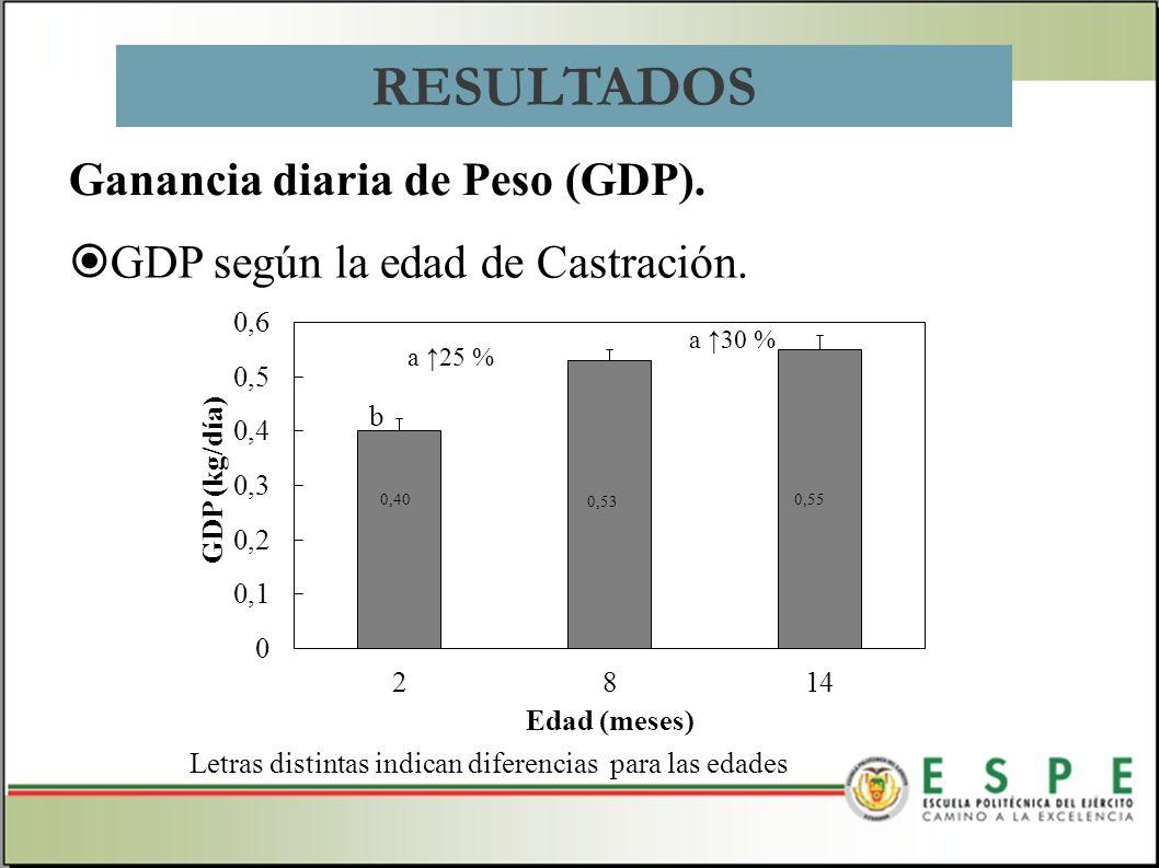 GDP según la edad de Castración. Ganancia diaria de Peso (GDP). RESULTADOS a 25 % Letras distintas indican diferencias para las edades