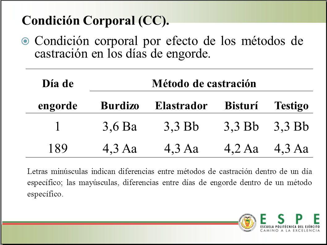 Condición corporal por efecto de los métodos de castración en los días de engorde. Condición Corporal (CC). Día deMétodo de castración engordeBurdizoE