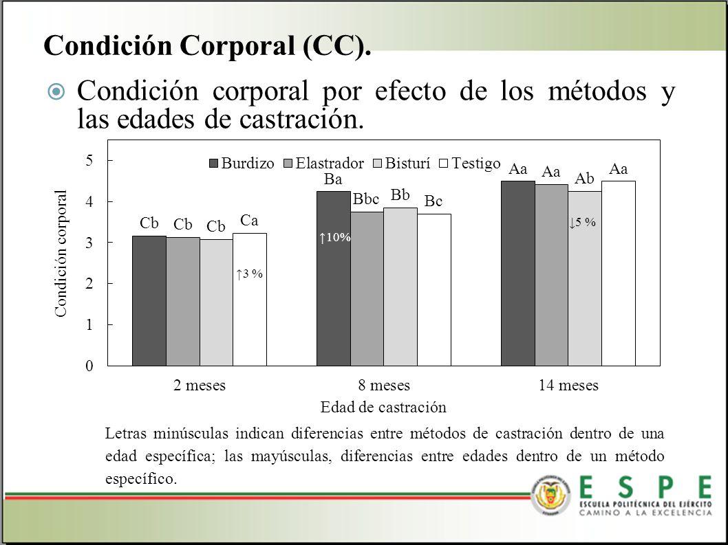 Condición corporal por efecto de los métodos y las edades de castración. Condición Corporal (CC). Letras minúsculas indican diferencias entre métodos