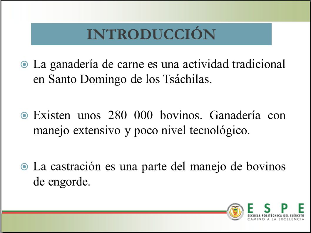 La ganadería de carne es una actividad tradicional en Santo Domingo de los Tsáchilas. Existen unos 280 000 bovinos. Ganadería con manejo extensivo y p