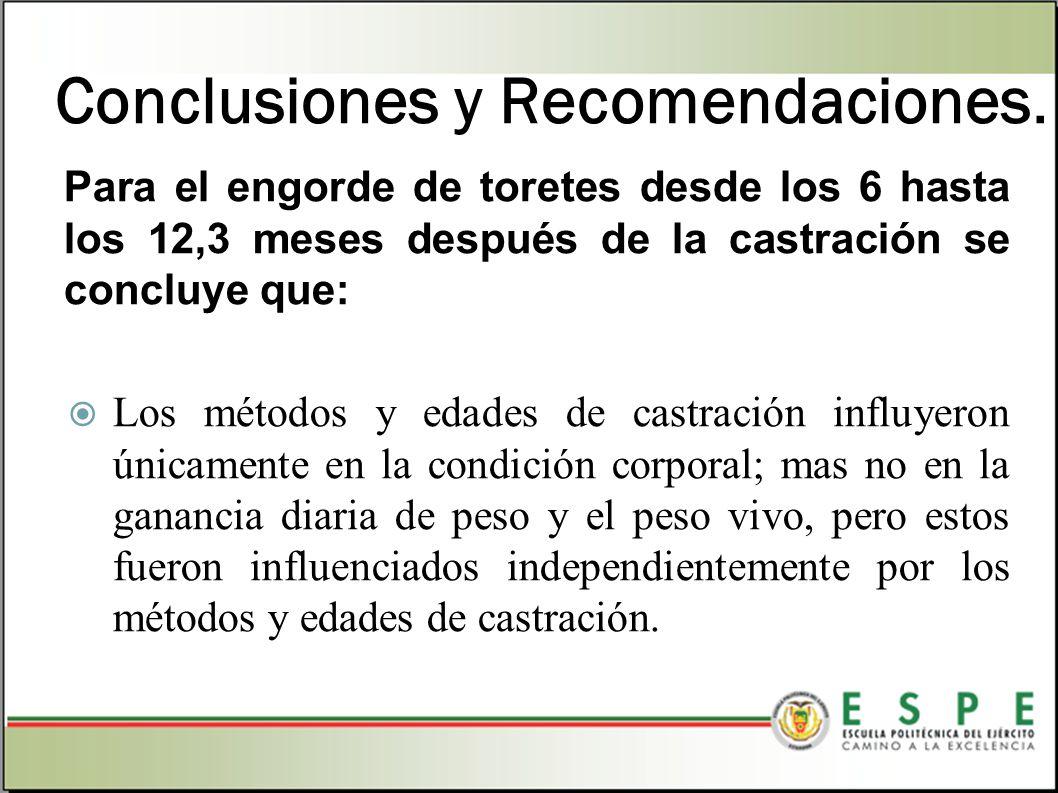 Conclusiones y Recomendaciones. Para el engorde de toretes desde los 6 hasta los 12,3 meses después de la castración se concluye que: Los métodos y ed