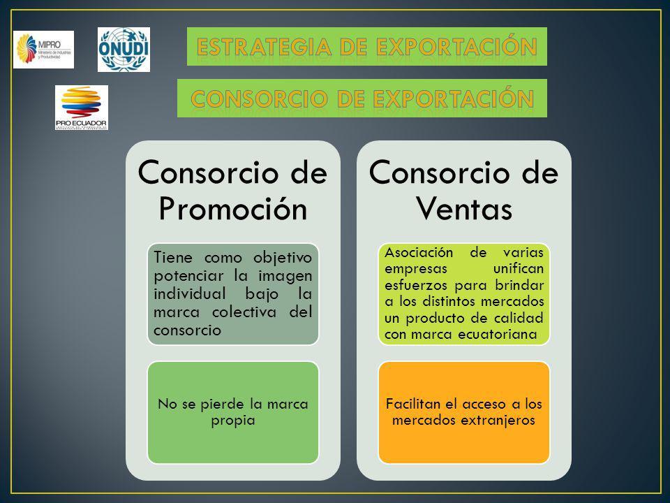 Consorcio de Promoción Tiene como objetivo potenciar la imagen individual bajo la marca colectiva del consorcio No se pierde la marca propia Consorcio