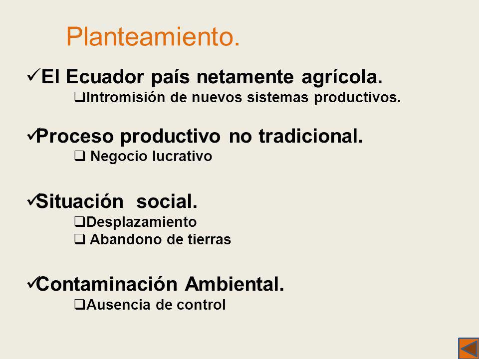 Planteamiento. El Ecuador país netamente agrícola. Intromisión de nuevos sistemas productivos. Proceso productivo no tradicional. Negocio lucrativo Si