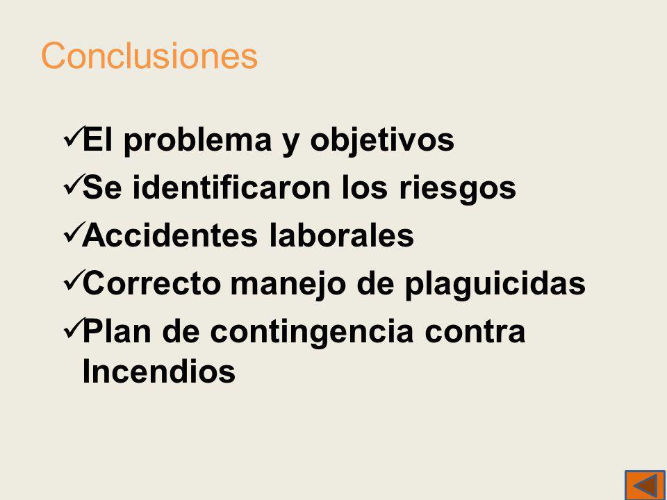 Conclusiones El problema y objetivos Se identificaron los riesgos Accidentes laborales Correcto manejo de plaguicidas Plan de contingencia contra Ince