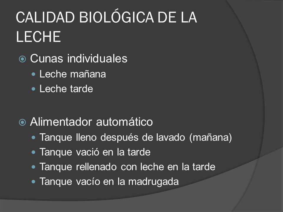 CALIDAD BIOLÓGICA DE LA LECHE Cunas individuales Leche mañana Leche tarde Alimentador automático Tanque lleno después de lavado (mañana) Tanque vació