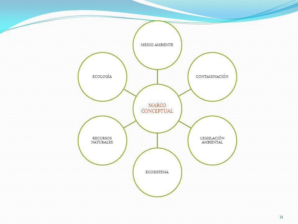 11 MARCO CONCEPTUAL MEDIO AMBIENTECONTAMINACIÓN LEGISLACIÓN AMBIENTAL ECOSISTEMA RECURSOS NATURALES ECOLOGÍA