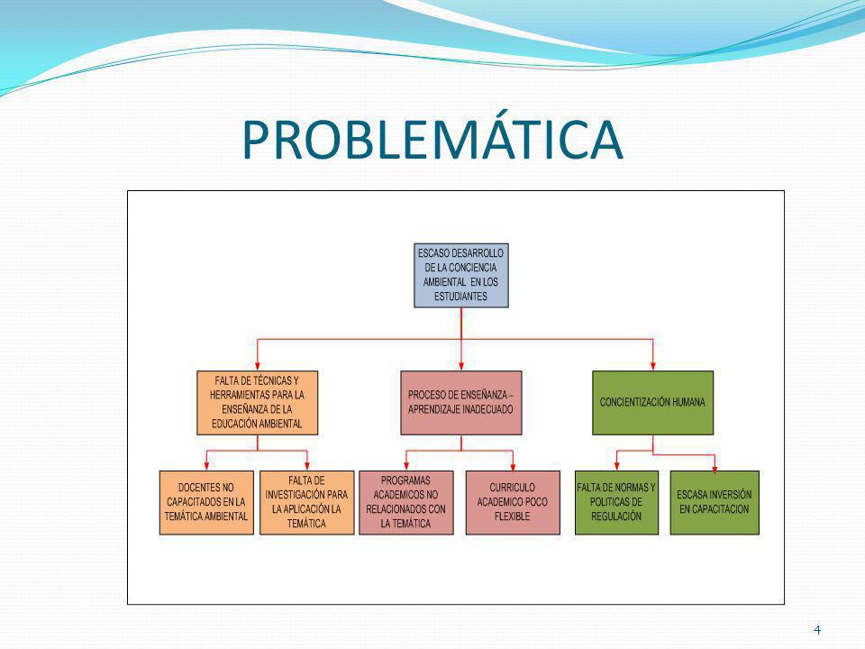 PROBLEMÁTICA 4