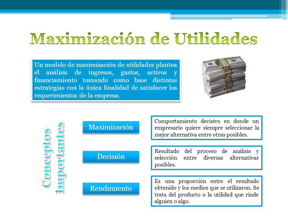Un modelo de maximización de utilidades plantea el análisis de ingresos, gastos, activos y financiamiento tomando como base distintas estrategias con la única finalidad de satisfacer los requerimientos de la empresa.