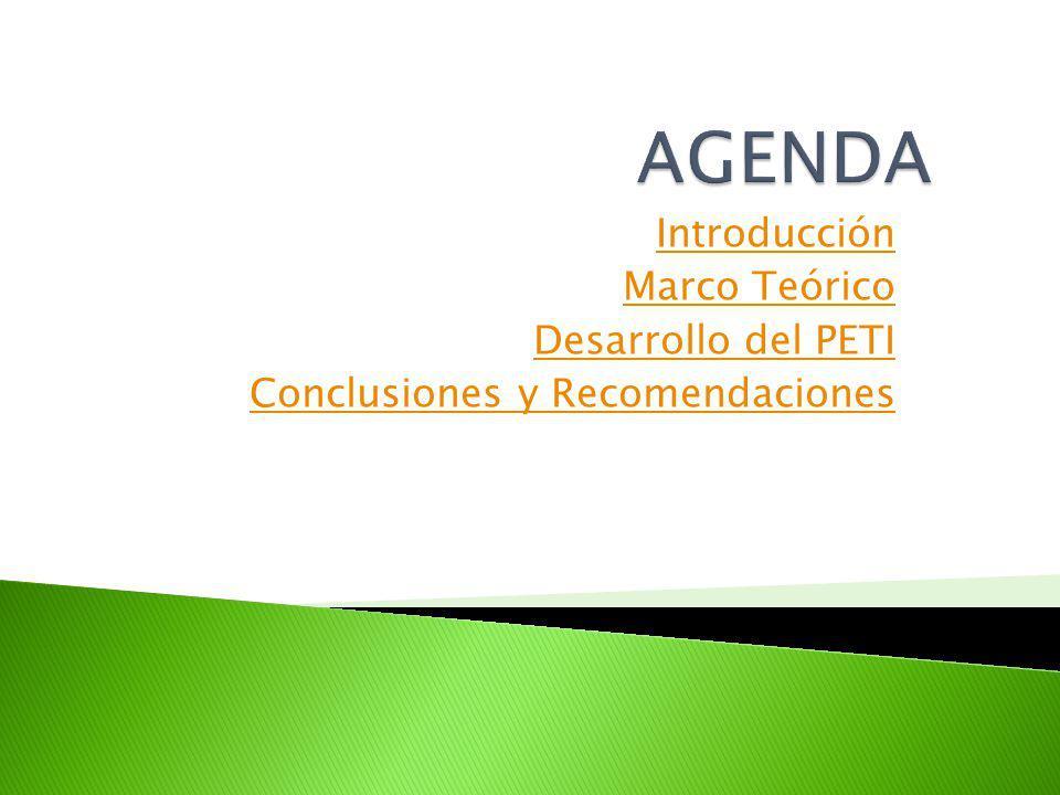 Introducción Marco Teórico Desarrollo del PETI Conclusiones y Recomendaciones