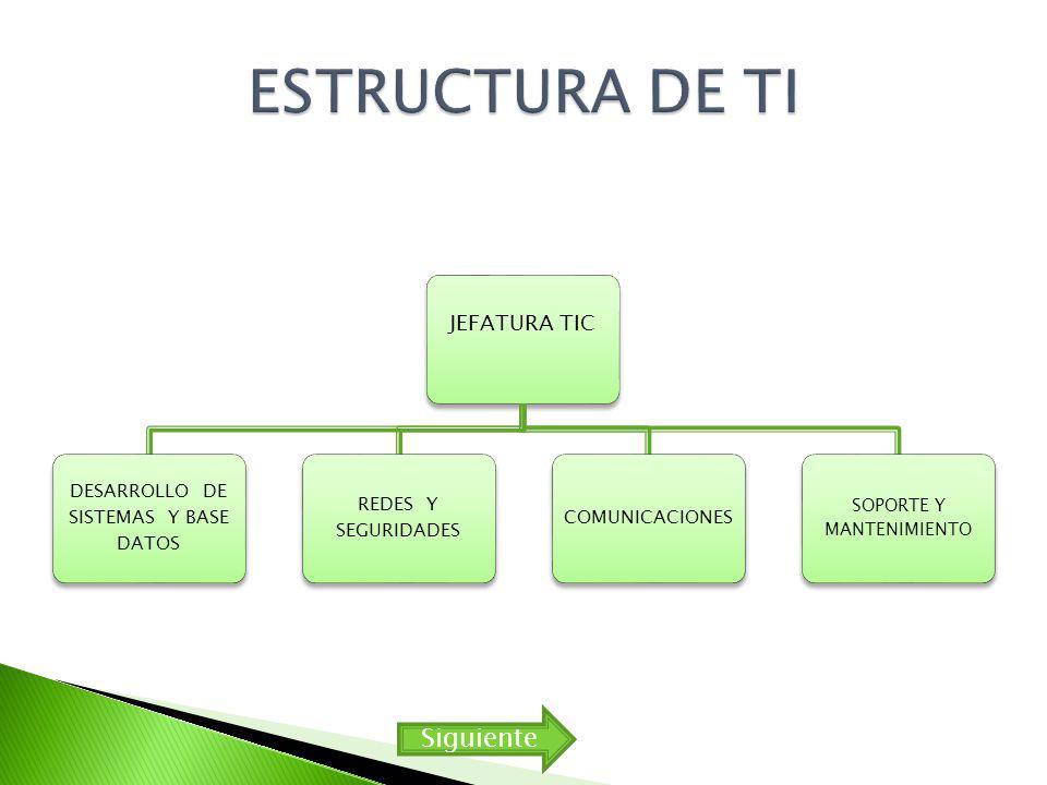 JEFATURA TIC DESARROLLO DE SISTEMAS Y BASE DATOS REDES Y SEGURIDADES COMUNICACIONES SOPORTE Y MANTENIMIENTO Siguiente