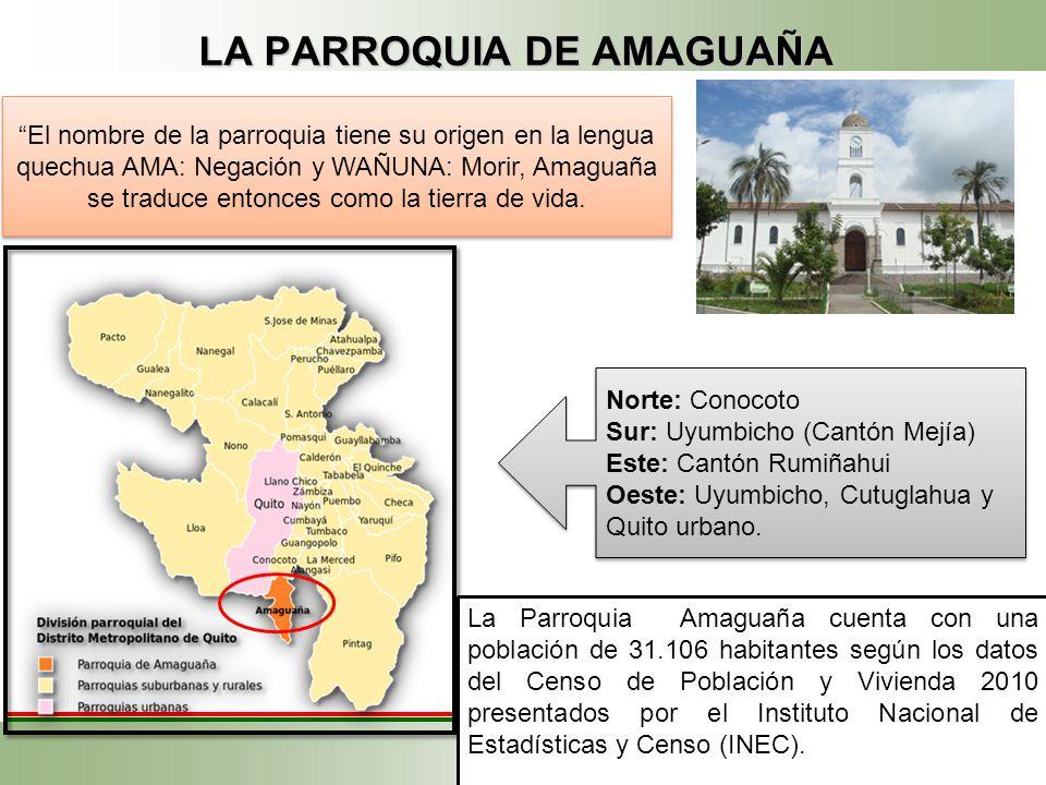 LA CAPACITACIÓN EN EL ECUADOR En el Ecuador existe una diversidad de oferentes tanto a nivel privado como público que están amparados por cuatro grand