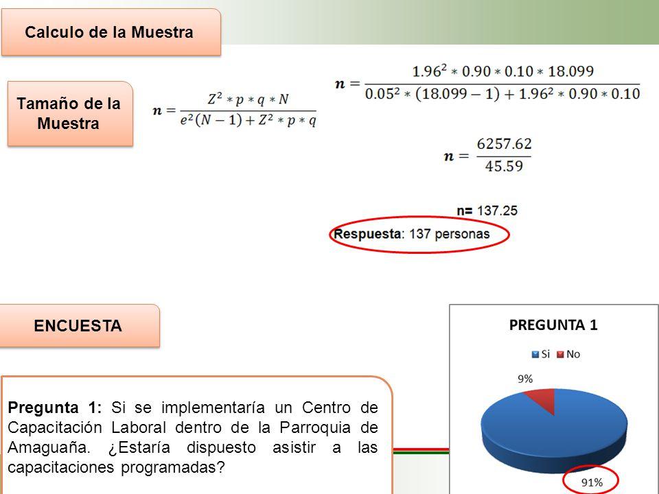 Determinación de la población objetivo Segmentación del mercado Segmentación Geográfica Segmentación Demográfica Segmentación Conductual País: Ecuador