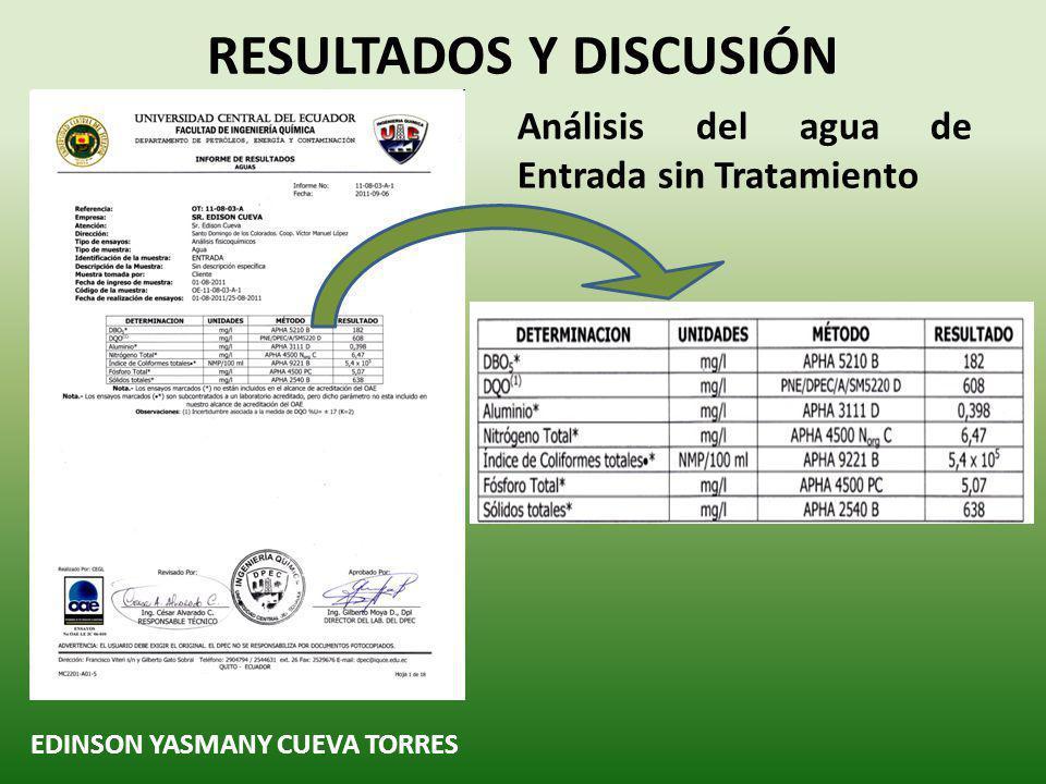 EDINSON YASMANY CUEVA TORRES Análisis del agua de Entrada sin Tratamiento RESULTADOS Y DISCUSIÓN