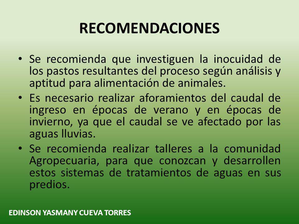 EDINSON YASMANY CUEVA TORRES RECOMENDACIONES Se recomienda que investiguen la inocuidad de los pastos resultantes del proceso según análisis y aptitud para alimentación de animales.