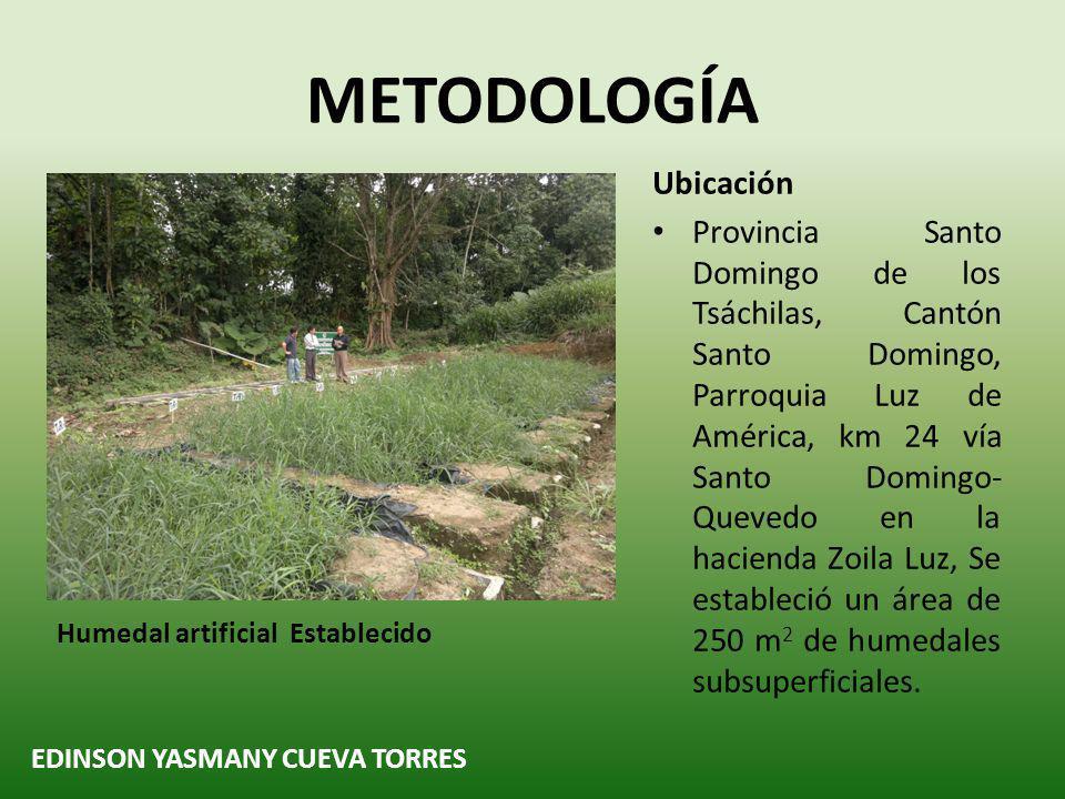 Niveles de Contaminación en Nitrógeno Total RESULTADOS Y DISCUSIÓN NIVELES DE CONTAMINACIÓN DEL AGUA RESIDUAL DE LA HACIENDA ZOILA LUZ EDINSON YASMANY CUEVA TORRES Comparación entre tratamiento PARAMETROMINISTERIO DE AMBIENTE (2009) * ESPÍNDOLA (2011) * FAO.