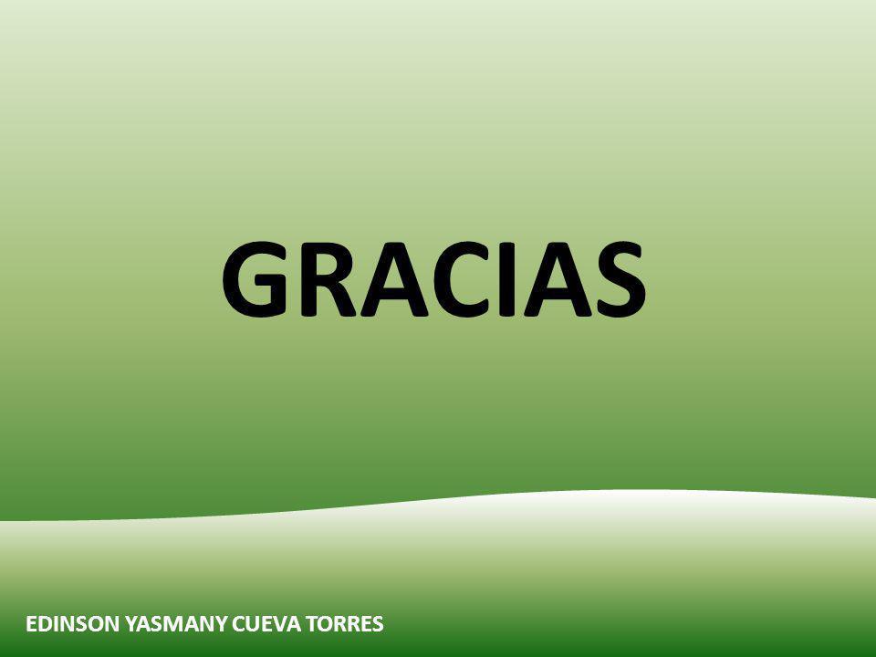 GRACIAS EDINSON YASMANY CUEVA TORRES