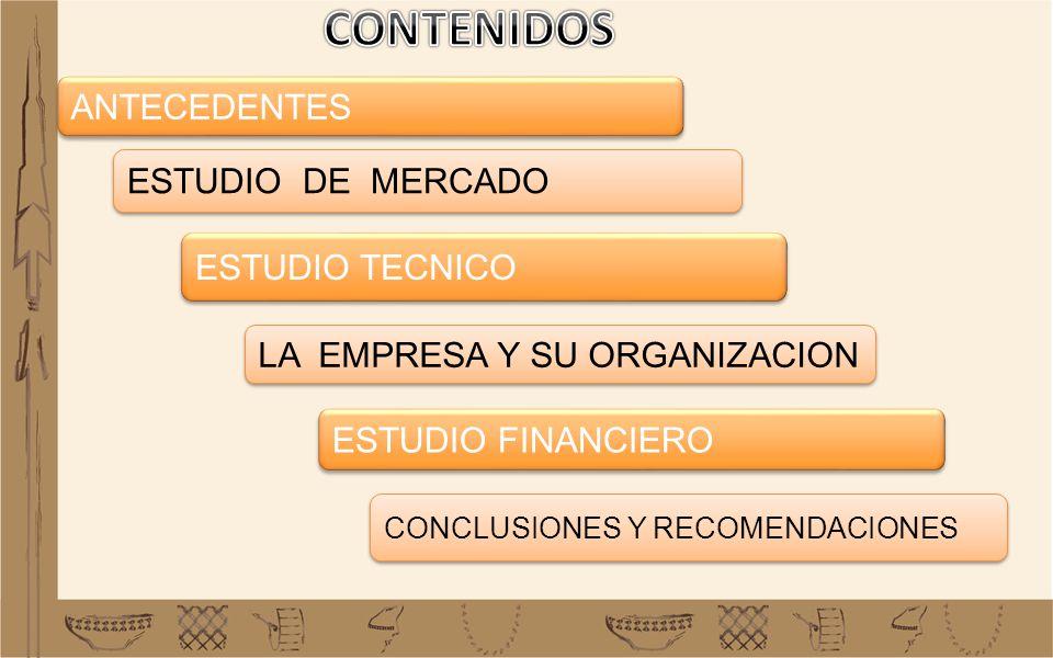 ANTECEDENTES LA EMPRESA Y SU ORGANIZACION ESTUDIO TECNICO ESTUDIO DE MERCADO ESTUDIO FINANCIERO CONCLUSIONES Y RECOMENDACIONES