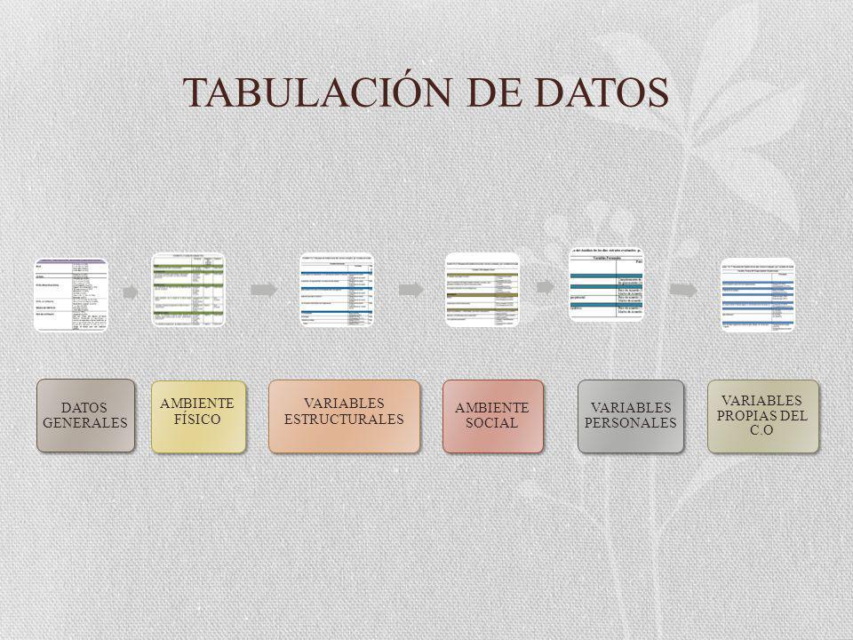 TABULACIÓN DE DATOS DATOS GENERALES AMBIENTE FÍSICO VARIABLES ESTRUCTURALES AMBIENTE SOCIAL VARIABLES PERSONALES VARIABLES PROPIAS DEL C.O