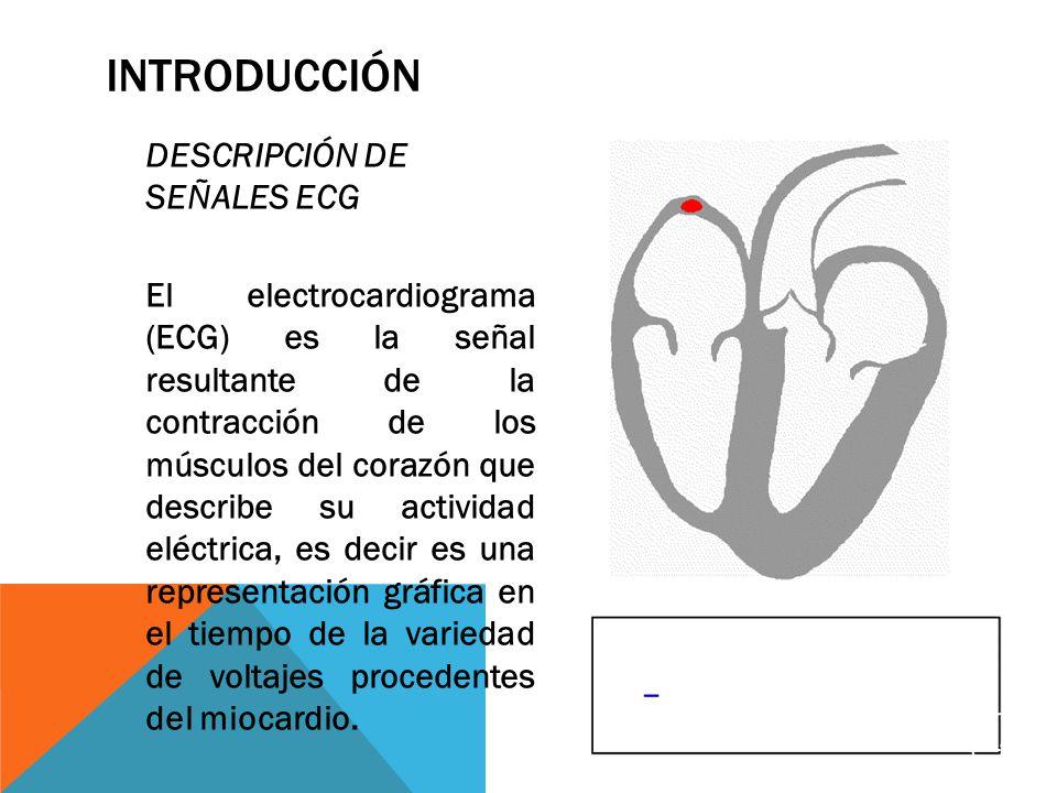 INTRODUCCIÓN DESCRIPCIÓN DE SEÑALES ECG El electrocardiograma (ECG) es la señal resultante de la contracción de los músculos del corazón que describe su actividad eléctrica, es decir es una representación gráfica en el tiempo de la variedad de voltajes procedentes del miocardio.