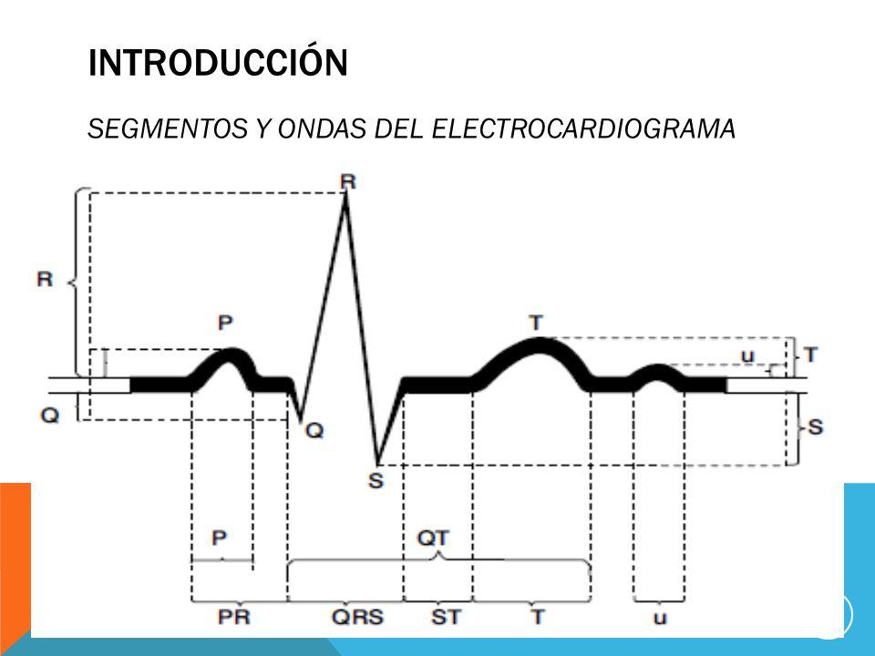 INTRODUCCIÓN SEGMENTOS Y ONDAS DEL ELECTROCARDIOGRAMA 15