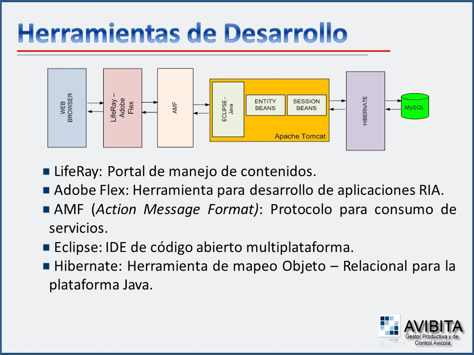 LifeRay: Portal de manejo de contenidos. Adobe Flex: Herramienta para desarrollo de aplicaciones RIA. AMF (Action Message Format): Protocolo para cons