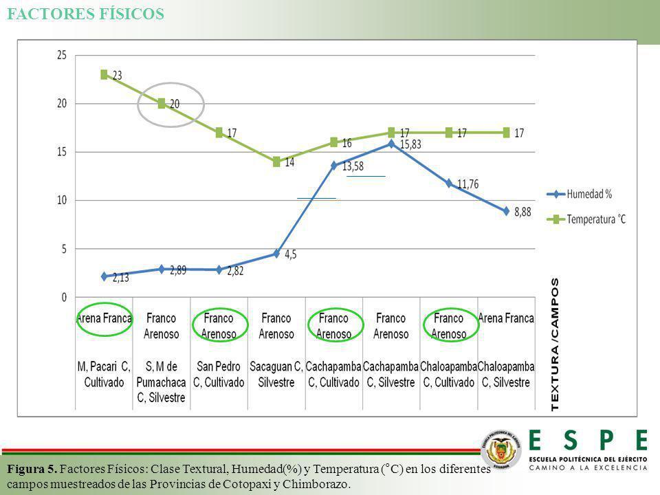 FACTORES FÍSICOS Figura 5. Factores Físicos: Clase Textural, Humedad(%) y Temperatura (°C) en los diferentes campos muestreados de las Provincias de C