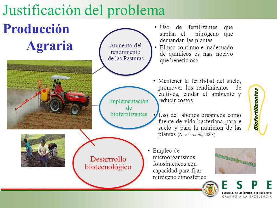 Justificación del problema Aumento del rendimiento de las Pasturas Uso de fertilizantes que suplan el nitrógeno que demandan las plantas El uso contin