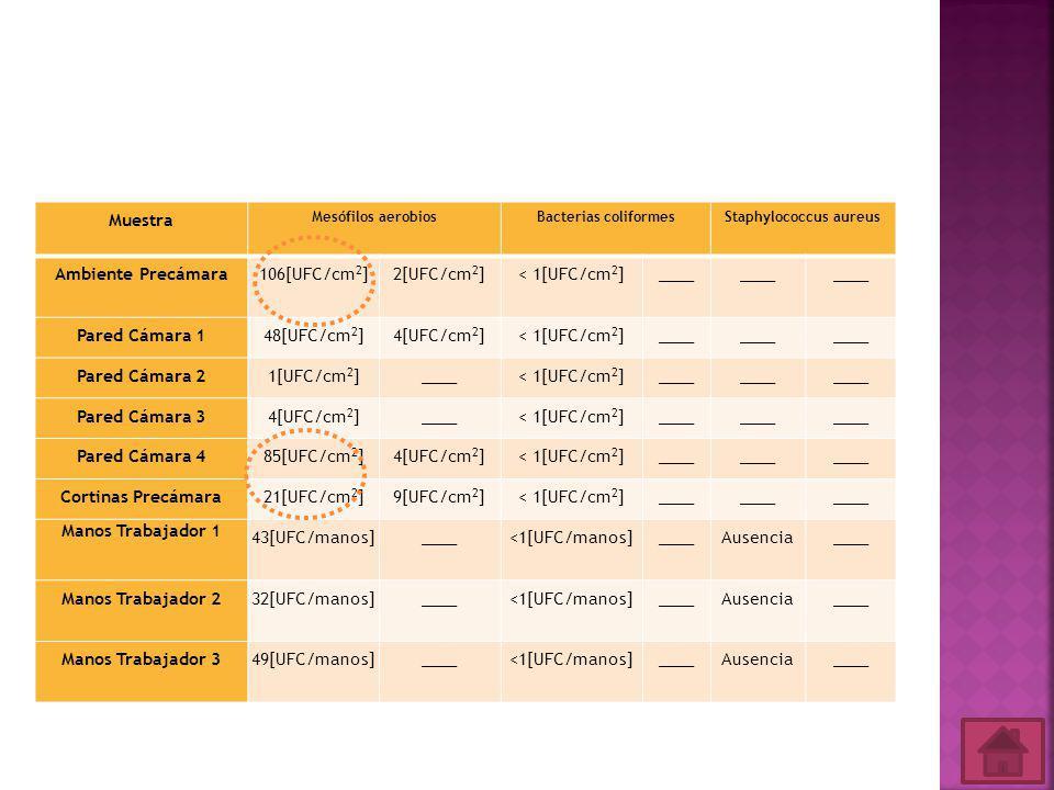 Muestra Mesófilos aerobios Bacterias coliformesStaphylococcus aureus Ambiente Precámara106[UFC/cm 2 ]2[UFC/cm 2 ]< 1[UFC/cm 2 ]____ Pared Cámara 148[UFC/cm 2 ]4[UFC/cm 2 ]< 1[UFC/cm 2 ]____ Pared Cámara 21[UFC/cm 2 ]____< 1[UFC/cm 2 ]____ Pared Cámara 34[UFC/cm 2 ]____< 1[UFC/cm 2 ]____ Pared Cámara 485[UFC/cm 2 ]4[UFC/cm 2 ]< 1[UFC/cm 2 ]____ Cortinas Precámara21[UFC/cm 2 ]9[UFC/cm 2 ]< 1[UFC/cm 2 ]____ Manos Trabajador 1 43[UFC/manos]____<1[UFC/manos]____Ausencia____ Manos Trabajador 232[UFC/manos]____<1[UFC/manos]____Ausencia____ Manos Trabajador 349[UFC/manos]____<1[UFC/manos]____Ausencia____