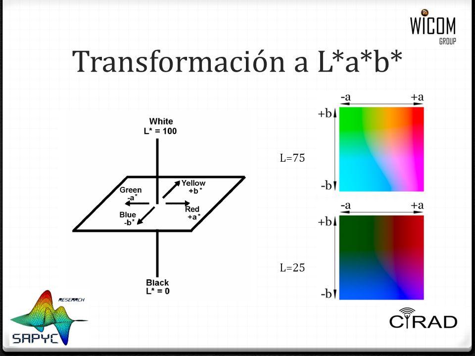 Transformación a L*a*b* L=25 L=75