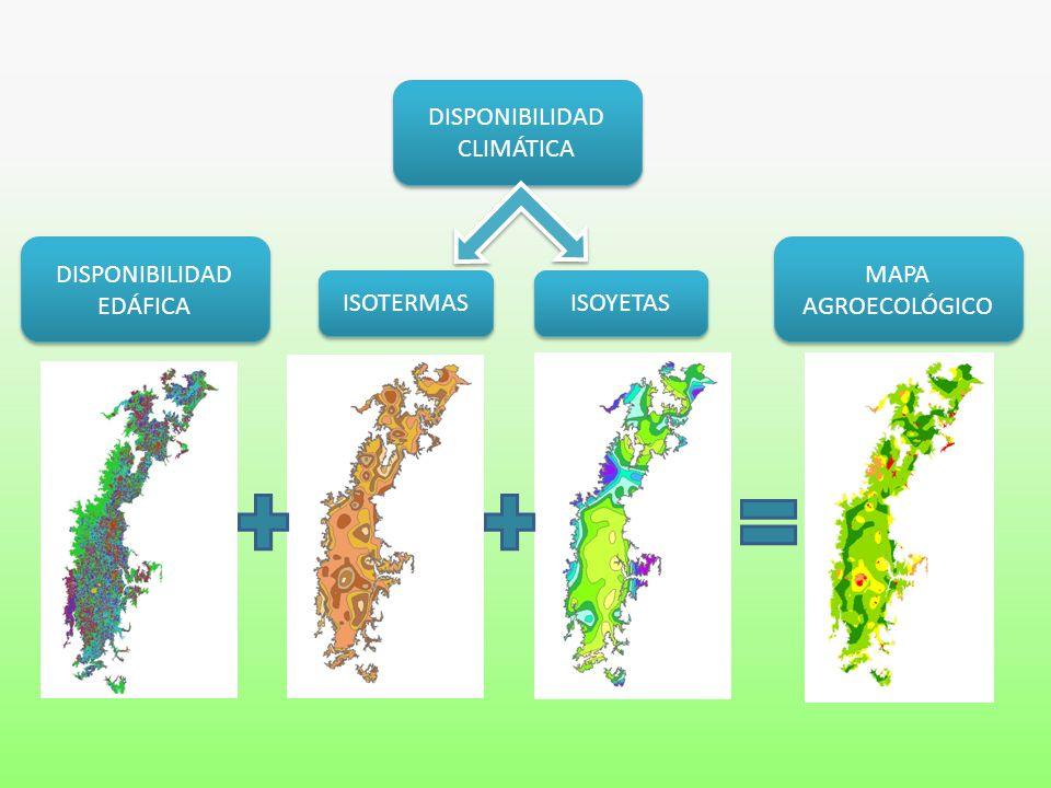 DISPONIBILIDAD EDÁFICA DISPONIBILIDAD CLIMÁTICA ISOYETAS ISOTERMAS MAPA AGROECOLÓGICO