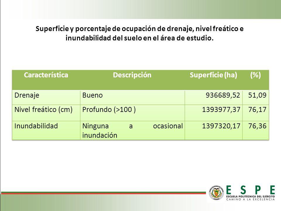 Superficie y porcentaje de ocupación de drenaje, nivel freático e inundabilidad del suelo en el área de estudio.