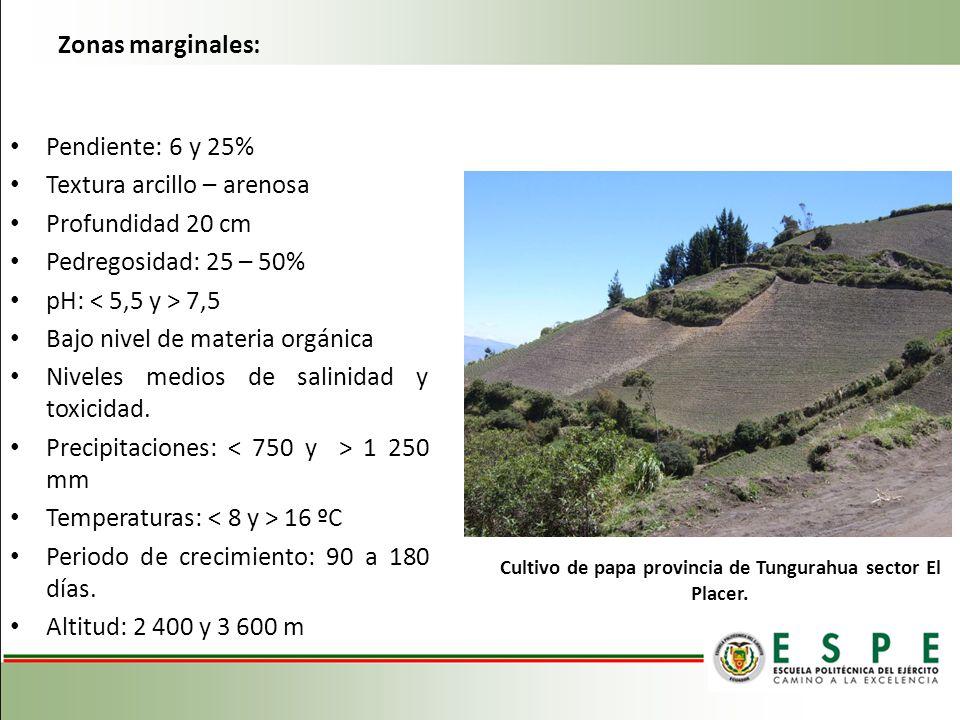 Zonas marginales: Pendiente: 6 y 25% Textura arcillo – arenosa Profundidad 20 cm Pedregosidad: 25 – 50% pH: 7,5 Bajo nivel de materia orgánica Niveles
