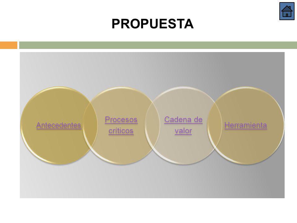 Antecedentes Procesos críticos Cadena de valor Herramienta PROPUESTA