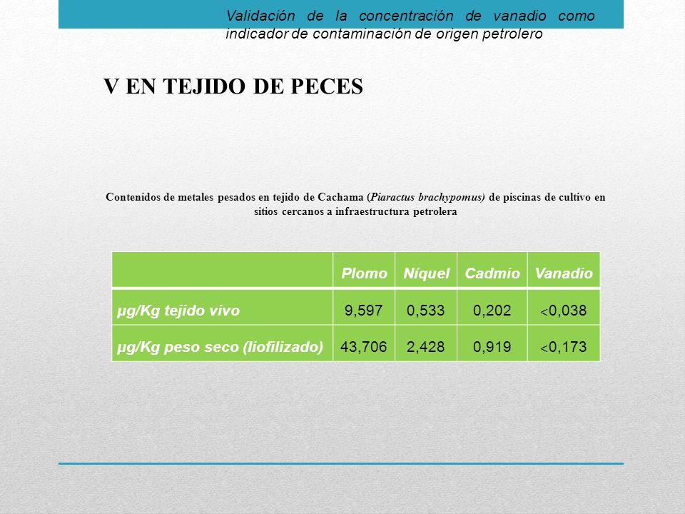 Validación de la concentración de vanadio como indicador de contaminación de origen petrolero V EN TEJIDO DE PECES PlomoNíquelCadmioVanadio μg/Kg tejido vivo9,5970,5330,202 ˂ 0,038 μg/Kg peso seco (Iiofilizado)43,7062,4280,919 ˂ 0,173 Contenidos de metales pesados en tejido de Cachama (Piaractus brachypomus) de piscinas de cultivo en sitios cercanos a infraestructura petrolera