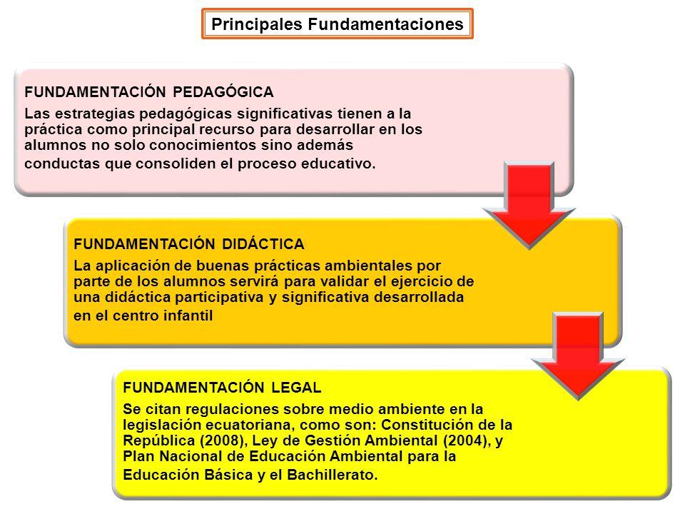 Principales Fundamentaciones FUNDAMENTACIÓN PEDAGÓGICA Las estrategias pedagógicas significativas tienen a la práctica como principal recurso para des