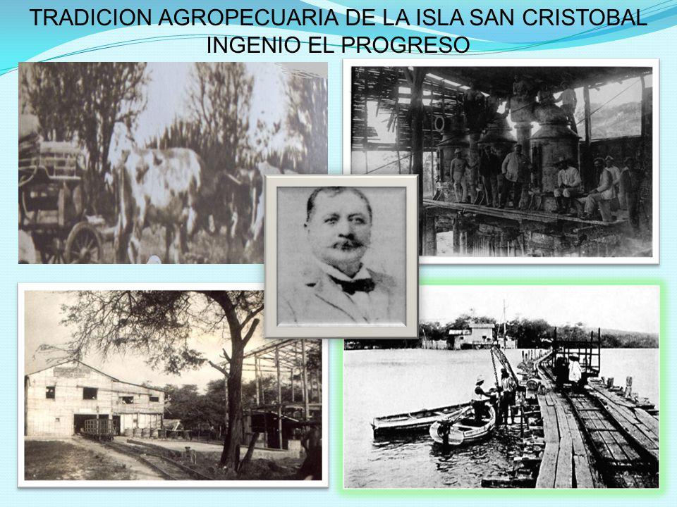 TRADICION AGROPECUARIA DE LA ISLA SAN CRISTOBAL INGENIO EL PROGRESO