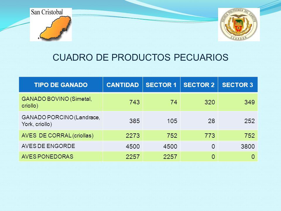 TIPO DE GANADOCANTIDADSECTOR 1SECTOR 2SECTOR 3 GANADO BOVINO (Simetal, criollo) 74374320349 GANADO PORCINO (Landrace, York, criollo) 38510528252 AVES DE CORRAL (criollas) 2273752773752 AVES DE ENGORDE 4500 03800 AVES PONEDORAS 2257 00 CUADRO DE PRODUCTOS PECUARIOS