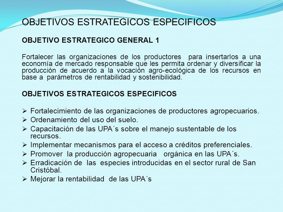 OBJETIVOS ESTRATEGICOS ESPECIFICOS OBJETIVO ESTRATEGICO GENERAL 1 Fortalecer las organizaciones de los productores para insertarlos a una economía de